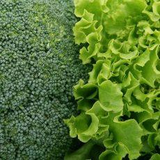 Les Légumes feuilles