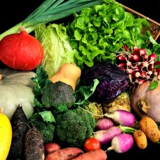 Paniers de légumes bio